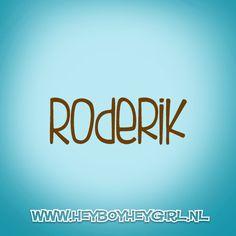 Roderik (Voor meer inspiratie, en unieke geboortekaartjes kijk op www.heyboyheygirl.nl)