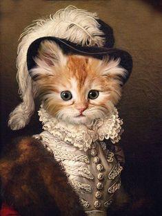 I'm a princess ! Fancy Cats, Cute Cats, Portrait Renaissance, Costume Chat, Photo Portrait, Portrait Photography, Cat Drawing, Dog Portraits, Beautiful Cats