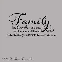 Family Like Branches on a Tree... Vinyl Wall Decal Home Decor Wall Quote Lettering 28x13.5