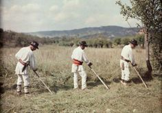 vintage everyday: 27 Rare and Fascinating Color Photographs of Romania in the 1934 - Three men use scythes to work in the hayfield. City People, Rich Image, Extraordinary People, World Cultures, Photo Library, Vintage Photographs, Royalty Free Photos, Old Photos, 1930s