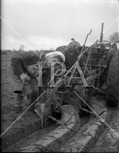 Queen of the Plough contest at the National Ploughing Championship, Kilkenny .29/01/1959 . See more photos like this at www.irishphotoarchive.ie #vintage #oldphotos #blackandwhite #film #artistic #finearts #ireland #irishhistory #historyphoto #history