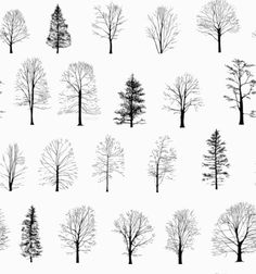 assorted_trees.gif (440×470)