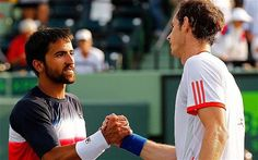 Murray moving on over Tipsarevic