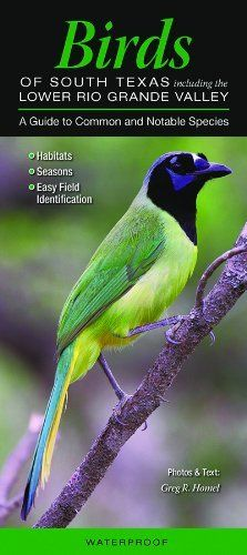 Birds of South Texas, Including the Lower Rio Grande Valley: A Guide to Common and Notable Species (Quick Reference Guides) by Greg R. Homel. $7.95. Publisher: Marketscope Books; Pmplt edition (December 1, 2009). Series - Quick Reference Guides. Publication: December 1, 2009