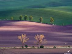 176. Colors of sunset. Moravia. Czechia. Photo by Pavel Oskin — National Geographic Your Shot
