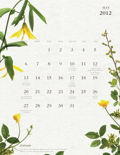 Download Terrain's May Calendar