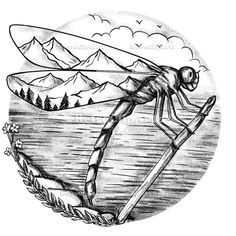 Dragonfly Mountain inside Wings Tattoo Vector Stock Illustration, Tattoo style illustration of a Dragonfly with Mountain scene inside Wings with lake ocean in background done in hand drawn sketch Tattoo drawing style. Dragonfly Drawing, Dragonfly Tattoo Design, Dragonfly Wings, Dragonfly Wall Art, Tattoo Designs, Mountain Drawing, Mountain Tattoo, Compass Tattoo, Bee Drawing
