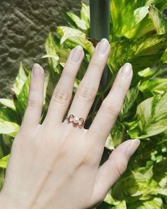 Akoya Pearl Bow Ring in 10K Rose Gold Jewelry, ¥21,600