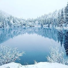 Озеро Синевир. Ukraine Carpathians Carpathian Mountains, Top Destinations, My Heritage, Running Away, Ukraine, Wanderlust, Around The Worlds, Europe, River