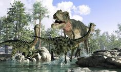 Dinosaurs Had Big Trouble Long Before Asteroid Struck: Study