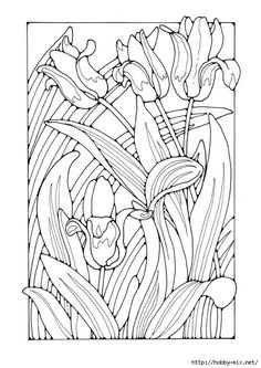 Tulips Kid Coloring Page