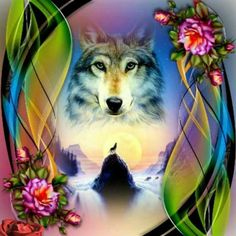 Wolf Photos, Wolf Pictures, Animal Pictures, Beautiful Wolves, Animals Beautiful, Cute Animals, Anime Wolf, Wolf Time, Native American Spirituality