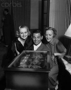 Carole Lombard & Clark Gable playing a popular marble game At a party held by Constance Talmadge (on right) June 1933 Old Hollywood Party, Old Hollywood Stars, Old Hollywood Glamour, Golden Age Of Hollywood, Classic Hollywood, Vintage Hollywood, Hollywood Couples, Classic Actresses, Classic Movies