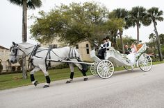 horse drawn carriage on wedding day