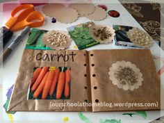 Make a seed book - for What's This? A Seed's Story.