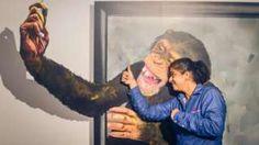 Image copyright                  NATHAN G Image caption                                      El chimpancé tomándose un selfie es uno de los más populares.                                El primer museo de arte clic en India, en la sureña ciudad de Chennai, ha recibido a unos 50.000 visitantes desde que abrió sus puertas hace apenas cuatro meses. Geeta Pandey, de la BBC, no resistió la tentación de ir a ver qué maravillas alberga para