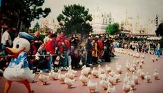 Donald Duck leading a parade of ducks in Disneyland.