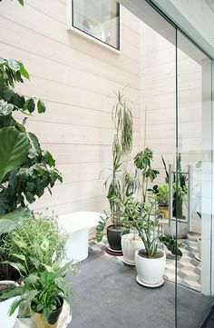 Honka Savukvartsi - urban greenery with wonderful high ceilings in the middle of the house. House In The Woods, Log Homes, Scandinavian Style, Greenery, Design Inspiration, Urban, Modern, Finland, Spaces