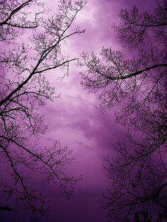 purple sky -- just before the purple rain starts Purple Rain, The Purple, All Things Purple, Shades Of Purple, Purple Sunset, Purple Stuff, Beautiful World, Beautiful Places, Beautiful Pictures