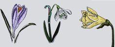 """Stickdatei  """"Krokus, Narcisse + Schneeglöckchen.."""" von  """"FeinKram""""  hier gibt es die schönsten Scherenschnitt StickDateien ;-))) auf DaWanda.com"""