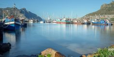 Information about Hout Bay including Accountants, Accommodation, Conference Venues, Restaurants and Wedding Venues in Hout Bay. Table Mountain, Cape Town, San Francisco Skyline, Instagram Story, South Africa, Entrepreneur, In This Moment, Transporter Vw, Bateau Yacht