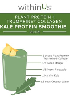 withinUs™ kale protein smoothie is packed with nutrients, protein, and antioxidants.   DID YOU KNOW? withinUs™ Plant Protein provides 25g of clean protein, iron, essential amino acids, AND a full serving of withinUs™ TruMarine® Collagen.  Protein Smoothie Recipes, Frozen Pineapple, Plant Protein, Gut Health, Amino Acids, Kale, Collagen, Beverages, Coconut