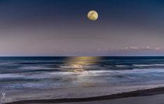 provocative-planet-pics-please.tumblr.com Moon rising over the Atlantic Ocean in New Smyrna Beach Florida #moon #moonrise #lunar #astro #astronomy #planets #solarsystem #AtlanticOcean #NewSmyrnaBeachFlorida #nsbinlet #LoveNSB #NSB #dayandnightnewsmyrnabeach #VolusiaCounty #landscape_captures #captivatingcaptures by annfluggefotos https://www.instagram.com/p/BCDD3buLcvm/