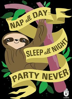 Sloth Life - no wonder I like sloths. They call to my inner introvert!!!!