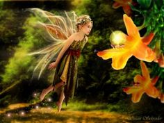 fairy fairies faery Faeries fantasy fae Flight  ©Susan SchroderFlight©