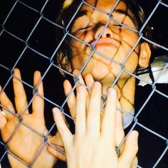 Who else would have kissed him through the fence -(not me but uhh maybe I would have maybe not idk) (probably) Kissing Him, Fence, Album, Card Book
