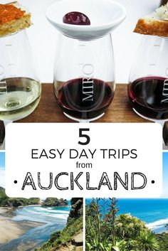 easy day trips from Auckland including wine tasting on Waiheke and exploring the Hobbiton Movie Set in Matamata. New Zealand North, Visit New Zealand, Auckland New Zealand, New Zealand Travel, Glow Worm Cave, Sydney, Melbourne, New Zealand Adventure, Places To Rent