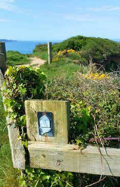 Der Küstenwanderweg in Cornwall | England