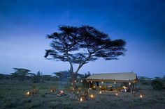 Serengeti Under Canvas, Serengeti National Park, Tanzania | African Safari Travel