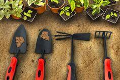 Kompleti za uživanje u bašti :)    https://goo.gl/JXPfI3    #Beorol #bašta #garden #tools