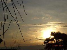 Un fresco venticello che fa ondeggiare i rami degli alberi. Buona giornata a tutti!!!