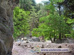 Crete, Chania, Samaria Gorge Crete Chania, Stepping Stones, Photo Galleries, Album, Gallery, Outdoor Decor, Plants, Stair Risers, Roof Rack