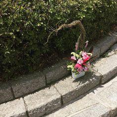 오늘의 꽃꽃이! 오늘도 위로 솟아남(...) #flowerarrangement #꽃꽂이 #flower #summer #점심시간 by talktohanny