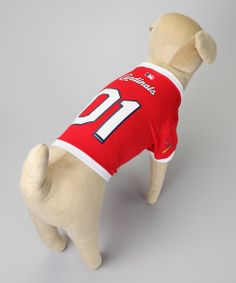 I'm no supporter of making dogs wear clothes by any means. But if you're going to make a dog wear something it should probably be a Cardinals jersey. -D
