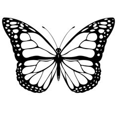 pictures of items the color black | black and white coloring page of a monarch butterfly.