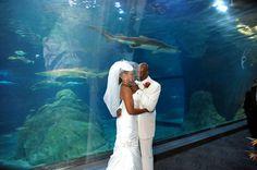 Book us for your next wedding event. Weddings2Plan.com