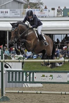 How awesome would it be to be a part of this team!! Wingberry Farms A Circuit Hunter Jumper Equestrian Facility King Toronto Ontario