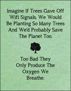 Imagine if trees gave off WIFI signals...