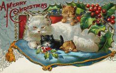 Postcard of Christmas Cats, 1899.