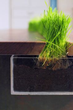 Planter Table ~ Grow your herbs, lettuce, chives, whatever...right in the table ~ Created by...Emily Wettstein