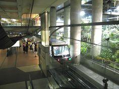 Station de métro Gare de Lyon (ligne 14) La plus écolo. Elle n'est pas recouverte du fameux carrelage blanc, puisque c'est un jardin exotique qui décore la station. Même la RATP se met au vert