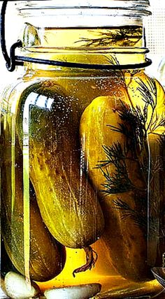 Garlic Dill Pickles by Trisha Yearwood ❊ Garlic Dill Pickles, Trisha Yearwood, Cucumber, Garlic Pickles, Cauliflowers