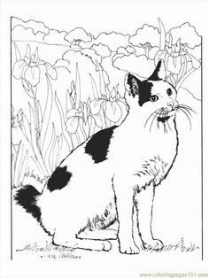 Cat1 (15) coloring page - Free Printable Coloring Pages