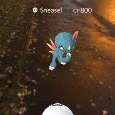 Pokémon Go Hunting At Night Capturing Snesel 3 Pokemon Hunt, Night Vision Monocular, Glasgow Scotland, Hunting, Christmas Ornaments, Holiday Decor, Gaming, Videogames, Christmas Jewelry