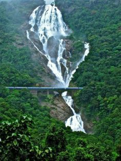 #Dudhsagar #Waterfall  Add thrill to your romance with the nature! Dudhsagar Waterfall in the #Indian state of #Goa is one of the world's most exquisite waterfalls. As the cascading waters appear white like milk, the waterfall is called Dudhsagar, Doodh being the Hindi word for milk.   Surrounded with breathtaking scenery overlooking a steep, crescent-shaped head of a valley carpeted with pristine tropical forest, that is only accessible on foot or by train.