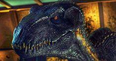 Jurassic Park Series, Jurassic Park World, J Park, Dinosaur Pictures, Beautiful Dragon, Jurassic World Fallen Kingdom, Dinosaur Art, Prehistoric Creatures, World Images
